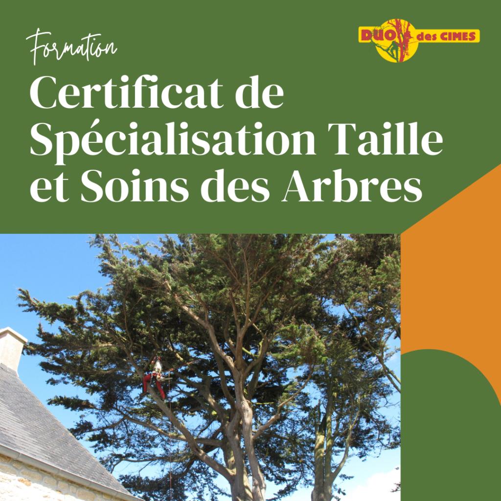 élagage formation certificat de spécialisation taille et soins des arbres bretagne plabennec